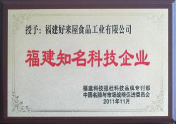 福建省知名科技企业